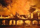 Daviso Love'o namų gaisras