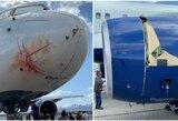 """""""Jazz"""" žvaigždes sukrėtė skrydis į Memfį: lėktuvą nudažė kraujas"""
