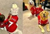 """A.Sanchezo įkurtuvės: """"Manchester United"""" marškinėliais pasipuošė ir abu futbolininko šunys"""