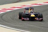 S.Vettelis nesunkiai nugalėjo Bahreino GP lenktynėse  (konkurso nugalėtojai)