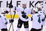 P.Marleau tapo 45-uoju žaidėju NHL istorijoje įmušusiu 500 įvarčių