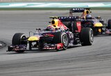 """S.Vettelis asmeniškai atsiprašė""""Red Bull"""" komandos personalo"""
