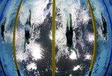Alytuje – galimybė patekti į pasaulio plaukimo čempionatą