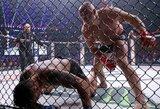 Įspūdinga: F.Jemeljanenka greičiau nei per minutę nokautavo buvusį UFC sunkiasvorių čempioną!