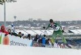 Pasaulio jaunimo slidinėjimo čempionate S.Terentjevas už nugaros paliko 12 varžovų