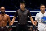 Legendinis UFC čempionas pateko į ONE turnyro finalą, M.Nguyenas techniniu nokautu apgynė diržą
