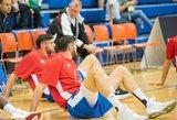Broliai Lavrinovičiai grįžta žaisti į Lietuvą