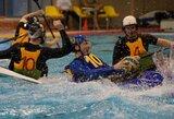 """Alytaus kanupolo taurę iškovojo """"Viking"""" komanda iš Olandijos"""
