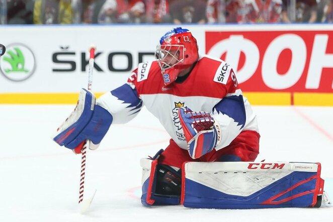 Čekų ir švedų rungtynės | IIHF nuotr.
