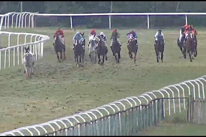 Žirgų lenktynės | Youtube.com nuotr.
