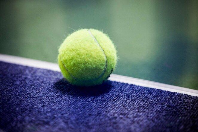 Teniso kamuoliukas | E.Gendrėnaitės nuotr.