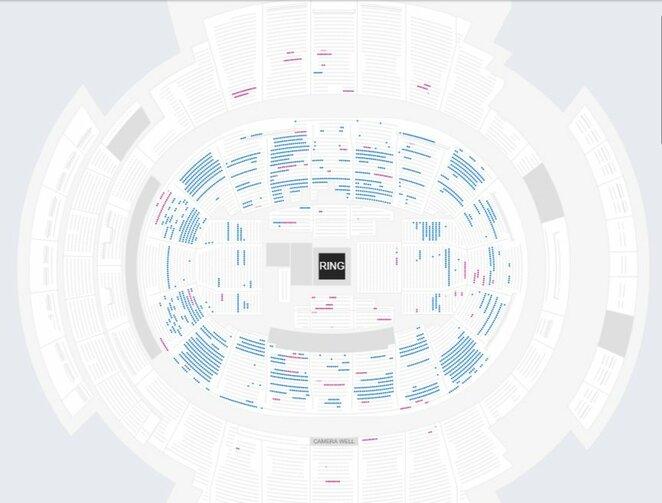 Mėlyna spalva pažymėtos laisvos vietos arenoje | Organizatorių nuotr.